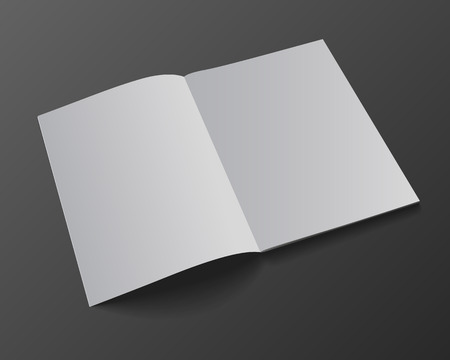 blank magazine: Blank magazine mockup template. Opened magazine. Realistic vector EPS10 illustration. Illustration