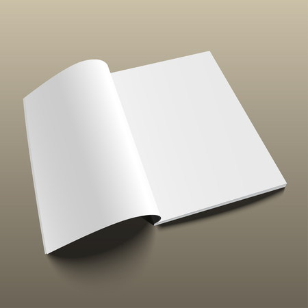 blank magazine: Blank magazine mockup template on gold background. Opened magazine.