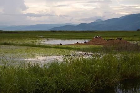 Burma, Myanmar, Inle lake, September 22