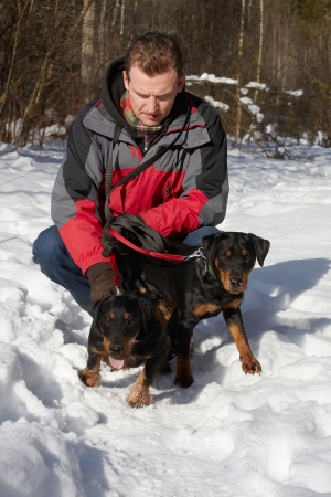 The man on a forest glade keeps in a red jacket of two puppies of Jagdterriers Stock Photo