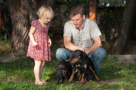 The father in a light shirt on a lawn shows to the fair-haired daughter of two quiet dogs