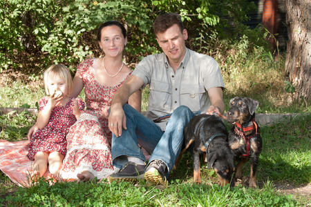 Mother with the daughter in summer dresses and the father in a light shirt sit on a grass in park. The daughter eats apple. Nearby there are two dogs - a Jagdterrier. Stock Photo