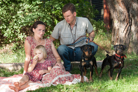 The young woman with the fair-haired daughter who eats apple, sit on a grass. The man who is sitting next and holding on a lead of two dogs looks at them.