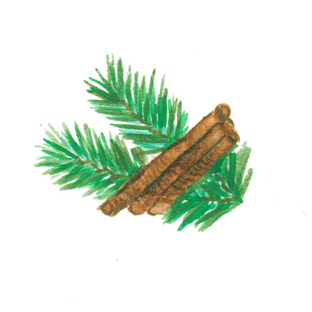 twigs: Christmas Pine Twigs with cinnamon. Watercolor illustration Stock Photo