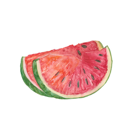 Slice of watermelon on white background. Watercolor illustration