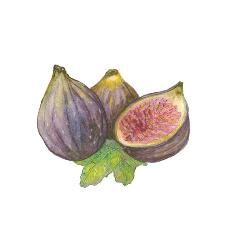 Whole figs and one fig sliced in half on white background