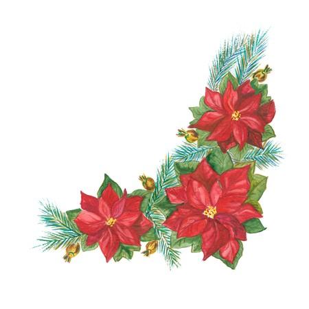 Rode Poinsettia en vuren tak voor Kerstmis