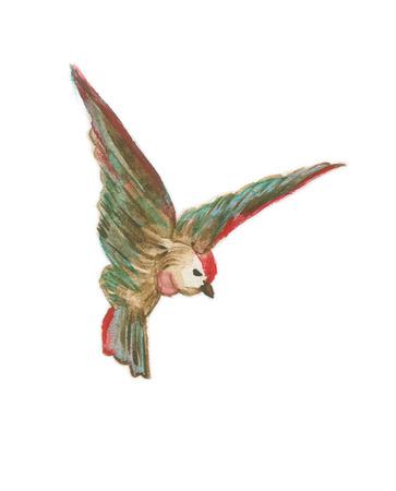 Little flying bird Stock Photo