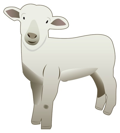 A hand drawn vectorized illustration of a sheep, cute face