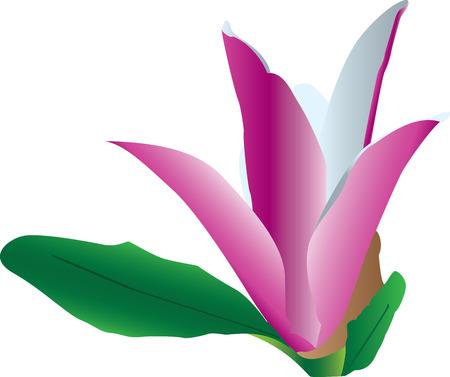 petal: Colorful flower in bloom Illustration