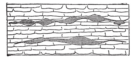 gash: Geological Vein, illustration showing horizontal gash veins (shaded) within galena limestone (unshaded), vintage engraved illustration. Trousset encyclopedia (1886 - 1891).
