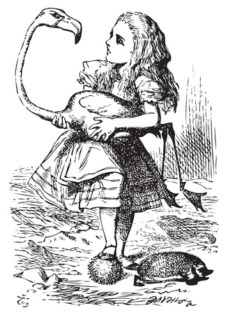 Alice trying to play croquet with flamingo and hedgehog - Alice's Adventures in Wonderland original vintage engraving. The chief difficulty Alice found at first was in managing her flamingo... Stock Vector - 13708349
