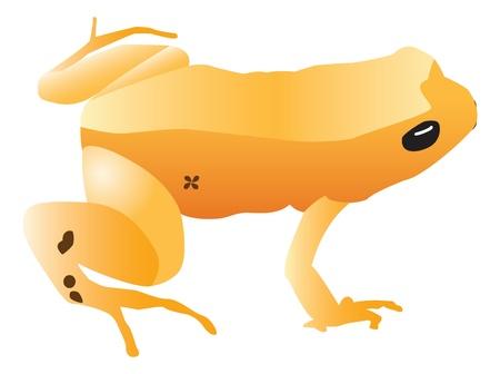 黄色カエル イラスト