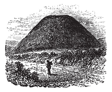 古墳シルベリー ヒル, ウィルトシャー州, イングランド, イギリス、ヴィンテージの図を刻まれています。Trousset (1886年-1891 年) の百科事典。 写真素材 - 13708102
