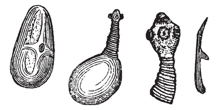 developed: Pork Tapeworm or Taenia solium, showing (1) cyst, (2) developing head, (3) developed head, and (4) hook, vintage engraved illustration. Trousset encyclopedia (1886 - 1891).
