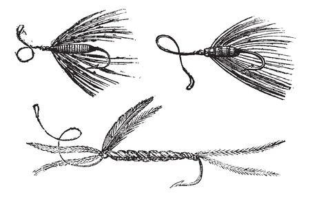 Fig. 49. Palmer. Fig. 50. Ant wing in August. Fig. 51. little Peacock, vintage engraved illustration. Magasin Pittoresque 1875. Stock Vector - 13766904