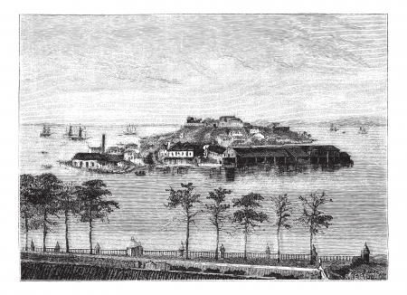 Snake Island in the Bay of Rio Janeiro. - Drawing Tirpenne, vintage engraved illustration. Magasin Pittoresque 1874.