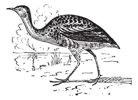 Rails, vintage engraved illustration. Dictionary of words and things - Larive and Fleury - 1895. Illusztráció