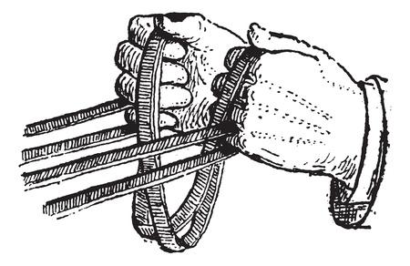 手綱、ヴィンテージの図を刻まれています。辞書の単語との事 - Larive、フルーリ - 1895年。