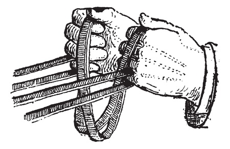 reins: Reins, vintage engraved illustration. Dictionary of words and things - Larive and Fleury - 1895.