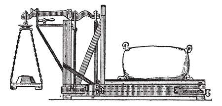 weighing scale: Fig. 3. Quintenz balance, vintage engraved illustration. Dictionary of words and things - Larive and Fleury - 1895.