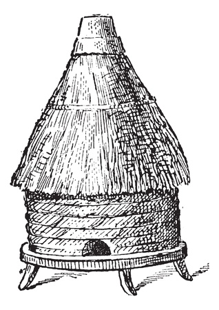 Hive: Common hive, vintage engraved illustration. Dictionary of words and things - Larive and Fleury - 1895. Illustration