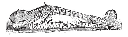 Old engraved illustration of the Sarcophagus of Mummy of Seracher, who was the nurse of King Taraks of twenty-fifth dynasty, 700 years before Christian era (Museum of Florence). Dictionary of words and things - Larive and Fleury ? 1895 Vector