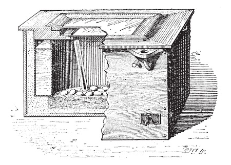Old engraved illustration of an artificial incubation. Dictionary of words and things - Larive and Fleury ? 1895 Vector