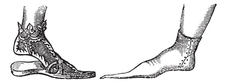 Sandal and Poulaine, vintage engraving. Old engraved illustration showing a Decorated Sandal from a Portrait of Emperor Frederick III (left) and an Italian Poulaine of the 14th Century (right).. Vector