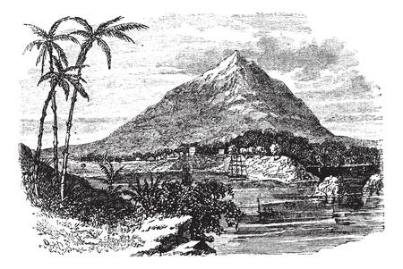 ビオコ島または Fernando Po 島で、赤道ギニア、1890 年代の間にヴィンテージの彫刻。古い北ビオコ島や Fernando Po 島のイラストを刻まれています。
