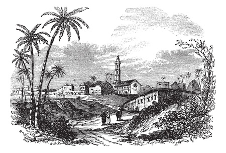 gaza: Gaza or Gaza City in Palestine, during the 1890s, vintage engraving. Old engraved illustration of Gaza with people and trees in front.