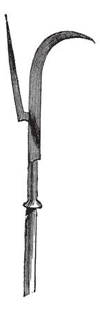 alabarda: Alabarda o Halbert o svizzero incisione voulge vintage. Old illustrazione incisa di alabarda.