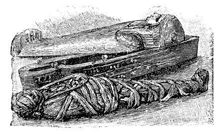 Egyptian mummy and sarcophagus (British Museum), vintage engraved illustration.  Trousset encyclopedia (1886 - 1891). Ilustração