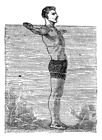Breaststroke, Third Position, vintage engraved illustration. Trousset encyclopedia (1886 - 1891). Stock Vector - 13770776