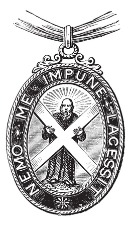 Insignia of the Order of the Thistle (Great Britain, United Kingdom), vintage engraved illustration. Trousset encyclopedia (1886 - 1891).