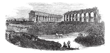 The ruins of temples at Paestum in Campania, Italy, during the 1890s, vintage engraving. Old engraved illustration of the ruins of temples with cattles in a pond at front. Vector