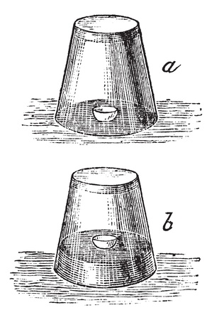 Combustion of Phosphorus in the air. Glass, water and egg shell test, vintage engraved illustration. Trousset encyclopedia (1886 - 1891). Imagens - 13766831