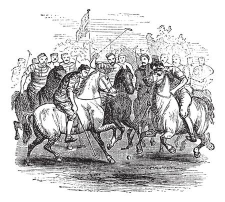 polo player: Polo, vintage engraved illustration. Trousset encyclopedia (1886 - 1891). Illustration