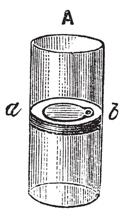 outflow: Flap Valve, vintage engraved illustration. Trousset encyclopedia (1886 - 1891). Illustration