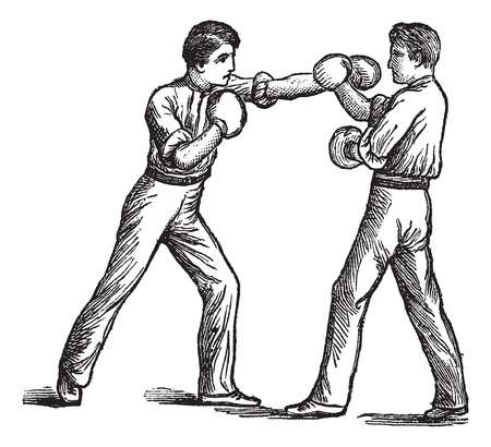 Two Boxers, boxing, vintage engraving. Old engraved illustration of two boxers showing how to make first blow and how to deal with it.