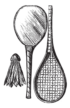 Two Rackets and shuttlecock, vintage engraving. Old engraved illustration of Two Rackets and shuttlecock isolated on a white background. Stock Vector - 13766822