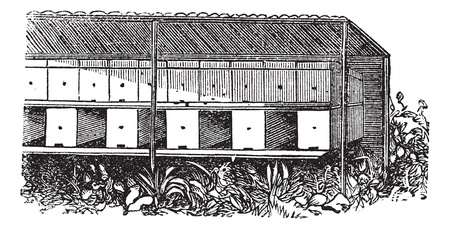 apiculture: Apiary or Bee yard, vintage engraving. Old engraved illustration of covered Apiary.