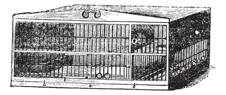 confinement: The compartment of cage, vintage engraving. Old engraved illustration of compartment of cage isolated on a white background.
