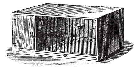 Mouse cage, vintage engraving. Old engraved illustration of Mouse cage. 일러스트
