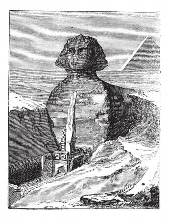 archaeological: Gran Esfinge de Giza en Giza, Egipto, durante la d�cada de 1890, el grabado de la vendimia. Ilustraci�n del Antiguo grabado de la Gran Esfinge de Giza. Vectores