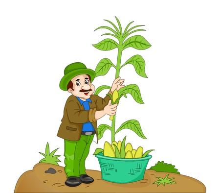 familiy: Man Harvesting Corn, vector illustration