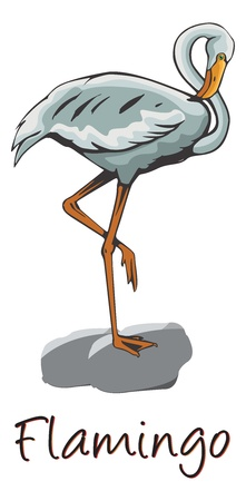 wade: Flamingo Perched on a Rock, Color Illustration