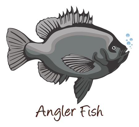 fischerei: Tiefsee-Anglerfisch, Farb Illustration