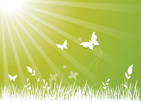 green environment: Environment, green background with grass, flowers, butterflies and sunshine, vector illustration