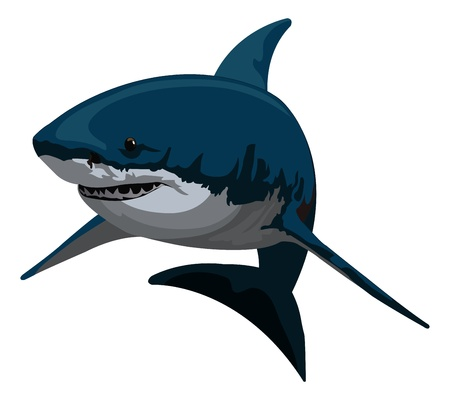 jaw: Shark, Blue and Gray, vector illustration